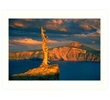 Crater Lake Sage Art Print