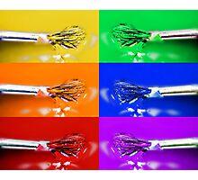 Rainbow Brushes Photographic Print