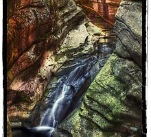 The Water Chute (July 2010) by Aaron Campbell