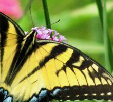Yellow Tiger Swallowtail  Sticker
