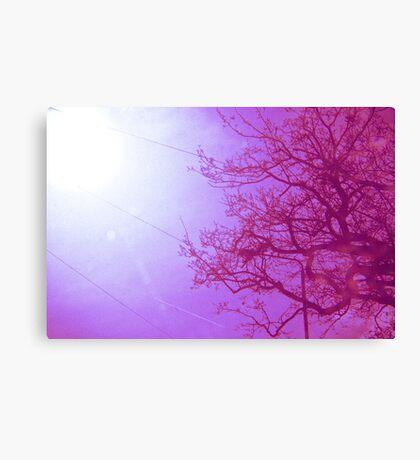 Her infinite variety Canvas Print