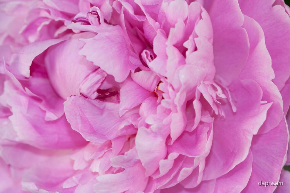 Romantically Revealing by daphsam