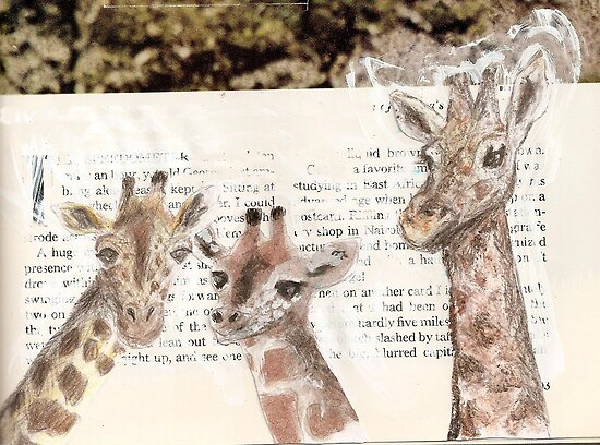 Giraffes by Claire Elford