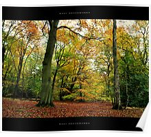 Fall at Epping Forest, London Poster