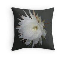 Epiphyte Blossom - Epiphyllum oxypetalum Throw Pillow