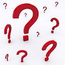 Question by Bruno Beach