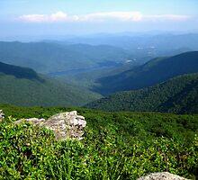 Mountain View - Blue Ridge Mountains by Glenn Cecero