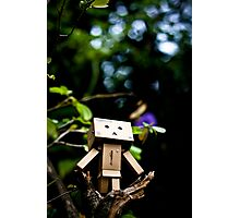 Danbo the Adventurer Photographic Print
