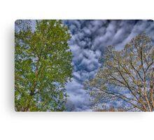 Spring Trees Under Rippled Sky Canvas Print