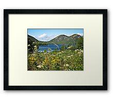 The Bubbles - Acadia National Park Framed Print