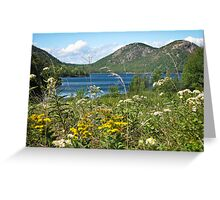The Bubbles - Acadia National Park Greeting Card