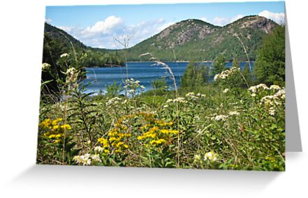 The Bubbles - Acadia National Park by kflanary
