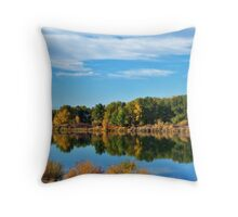 Coming Home From Puget Sound, Washington Throw Pillow