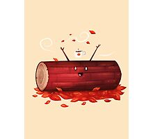 Pumpkin Spice Log(tte) Photographic Print