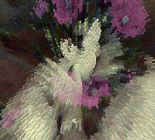 Xplosion by Dulcina