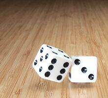 Roll the Dice by csader