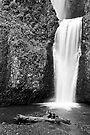 Lower Multnomah Falls by Leon Heyns