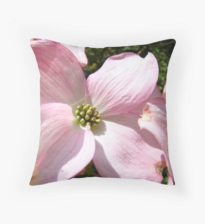 Floral Spring Pink Dogwood Tree Flowers Baslee Troutman Throw Pillow