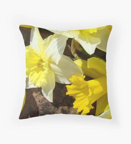 Rock Garden Yellow Daffodil Flowers art Baslee Troutman Throw Pillow