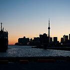 Toronto Downtown and Port by Gary Chapple