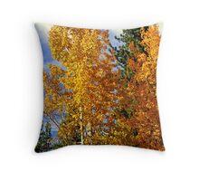 """""""Autumn Colors"""" Throw Pillow"""