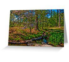 Springtime, Hodges Gardens State Park (HDR) Greeting Card