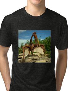 Dino Bird  Tri-blend T-Shirt