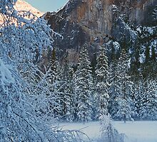 WINTER,MERCED RIVER by Chuck Wickham