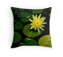 Water Lily!  Throw Pillow