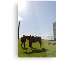 Police Horse - Seattle, Washington Metal Print