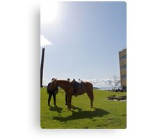 Police Horse - Seattle, Washington Canvas Print