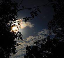 shy sun by iamYUAN