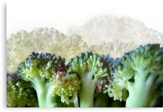 Broccoli Hills by Lena Weiss