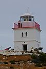 Cape Borda Lighthouse by Graeme  Hyde