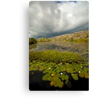 Dark Clouds over Lily Pond Canvas Print