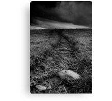 The moors. Canvas Print
