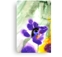 Violet Beauty Canvas Print