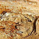 Ancient Land by Kathie Nichols