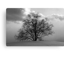 Just a Tree Canvas Print