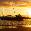 Boat Harbour Sunrise by Chris Paddick