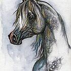 the grey arabian horse portrait by tarantella