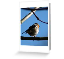 No hiding in The Barn now Greeting Card