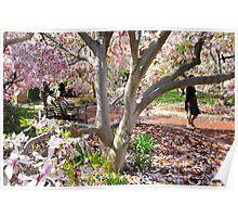 春 (Spring) Poster