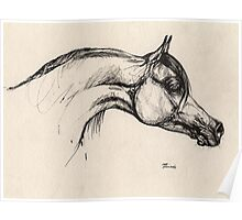 the arabian horse drawing Poster