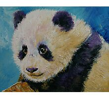 Panda Cub Photographic Print