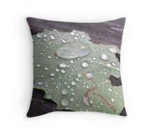 Water Droplets on Leaf  Throw Pillow