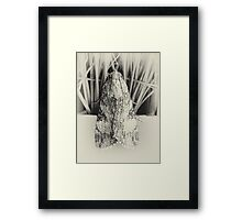©NS Moth Eyes IIA Monochrome. Framed Print