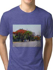 Poinciana Trees, Victoria Point, Queensland, Australia Tri-blend T-Shirt