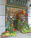 Flower shop, Budapest, Hungary. by Margaret  Hyde