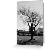 Another Boring Tree in Black and White Greeting Card